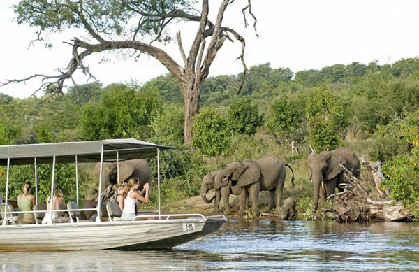 Sanctuary In Zambia And Botswana Tour