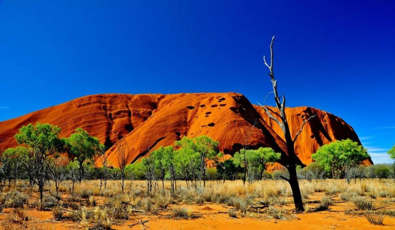Australia Honeymoon Package