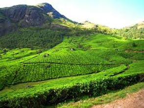 God's Own Country - Kerala Tour