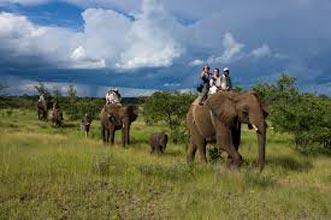 Sanctuary In Zambia And Botswana Tour