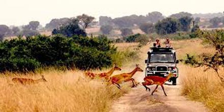 Extraordinary Trip To Queen Elizabeth National Park, 3 Days