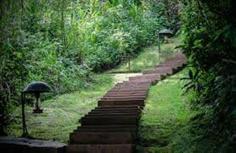 Safari To Rwanda & Uganda Tour