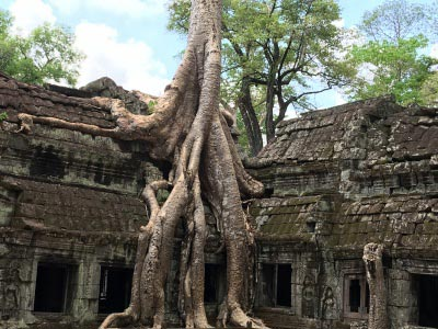 Around Cambodia Tours