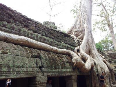 Cambodia - Thailand - Vietnam Tours