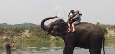 Kathmandu Valley And Chitwan Tour 7 Days
