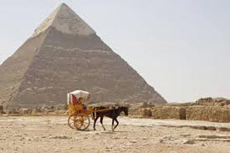 Pyramids Of Giza And The Egyptian Museum Day Tour
