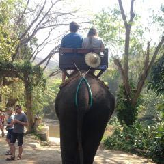 Bridge Over The River Kwai + Elephant Bath And Ride Package