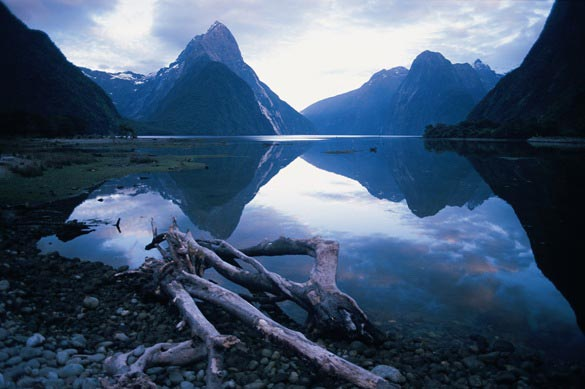 Picture Perfect -7 Day South Island Tour Package
