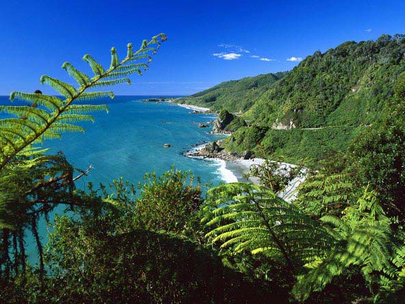 9 Day - Kea South Island Tour Package
