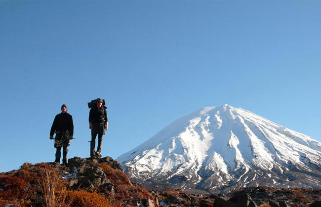 8 Day Awesome North Island Trip Package
