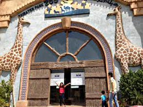 Emirates Zoo Park Tour