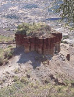 Olduvai Gorge Package