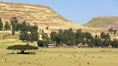 9-days Cultural Southern Ethiopia Tour