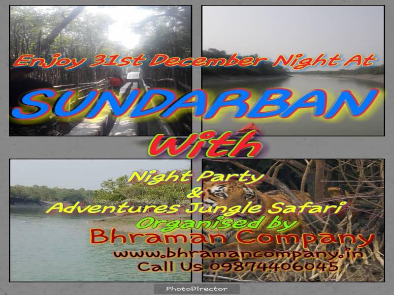 New Year Celebration Party At Sundarban