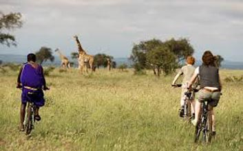 13 Day Tanzania Cycle Safari Tour