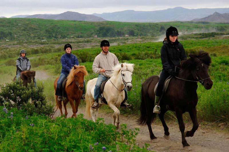 Horseback Riding Tour Package