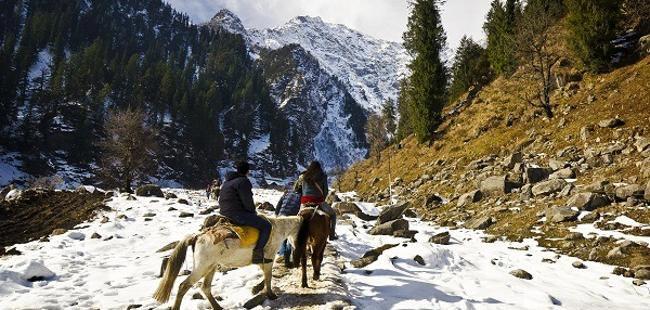 Plains Of Punjab And Himachal Pradesh Tour