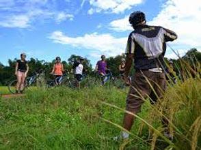 Hike & Bike In The Mae Sa Valley Tour