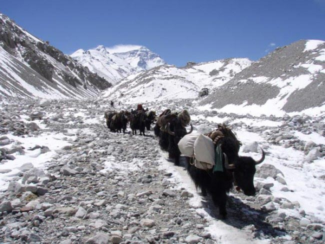 Advance Everest Base Camp Trek From Tibet Tour