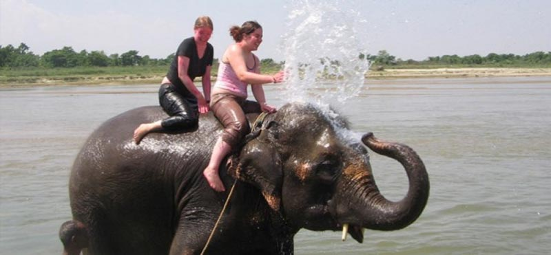 Nepal Cultural And Wildlife Tour