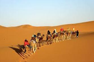 Sunset Camel Ride In Agadir Tour