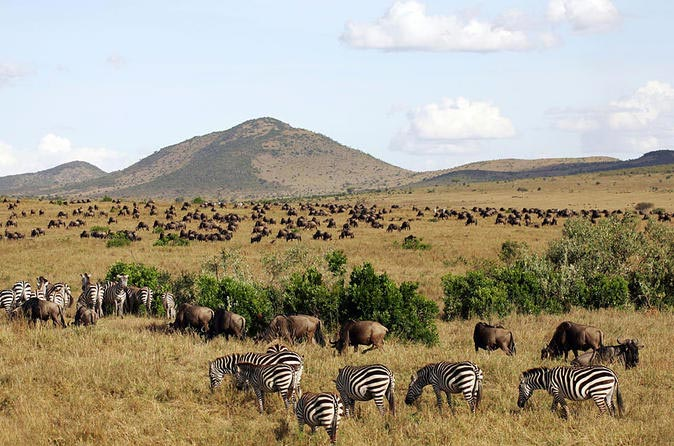 Masai Mara Safari Camping Package