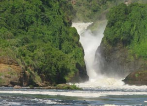 Murchison Fall National Park Tour And Kibale Game Park Package