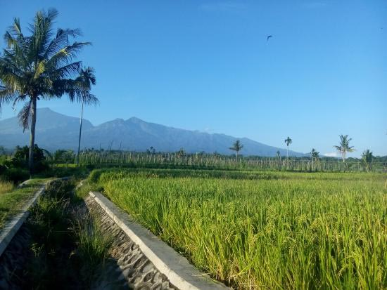Lombok Echo Tour Package