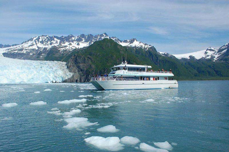 Kenai Explorer Tour Package