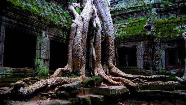 Siem Reap – Angkor Temples – Tonle Sap Lake Tour