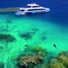 2 Day Reef – Silversonic, Rainforest & Culture Tour From Port Douglas Tour