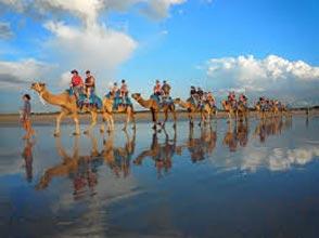 Bali Camel Safaris Package