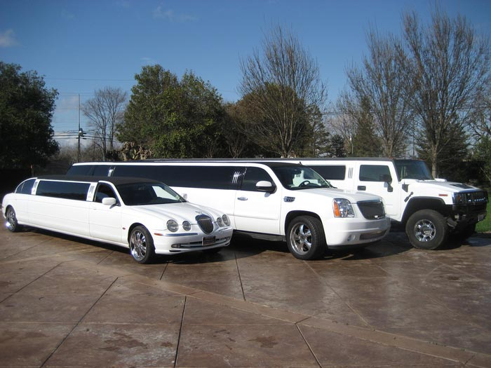 Limousine Tour Package