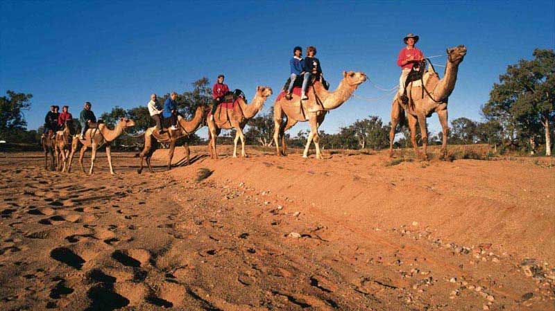 Darwin To Alice Springs Adventure With Adventures Beyond Package