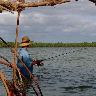 Sea Kayaking The Florida Keys Tour