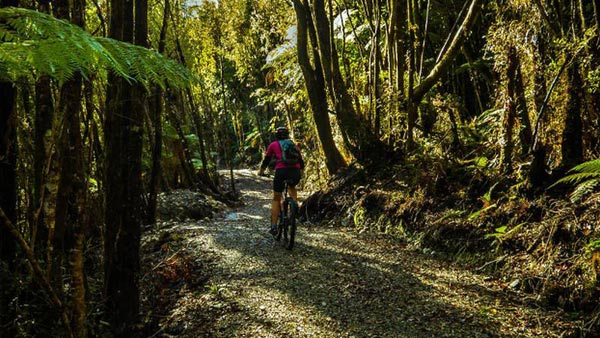 West Coast Wilderness Cycle Trail Tour