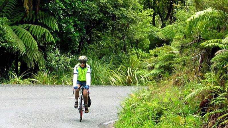 Northland Cycle Tour