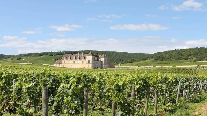 Taste Of Burgundy Tour