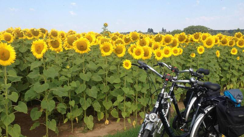 Loire Valley Cycle Tour