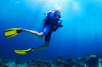 Blue Dive – 3-Day Open Water Course Package