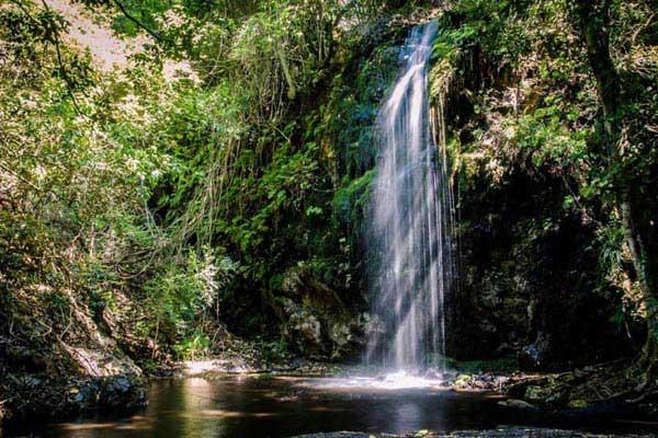 Crystal Pools Hike Tour