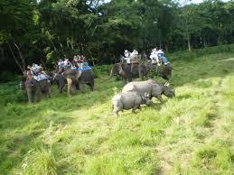 1 Nights 2 Days Chitwan Jungle Safari Package