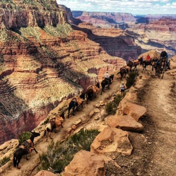 Grand Canyon One Day Trip Package