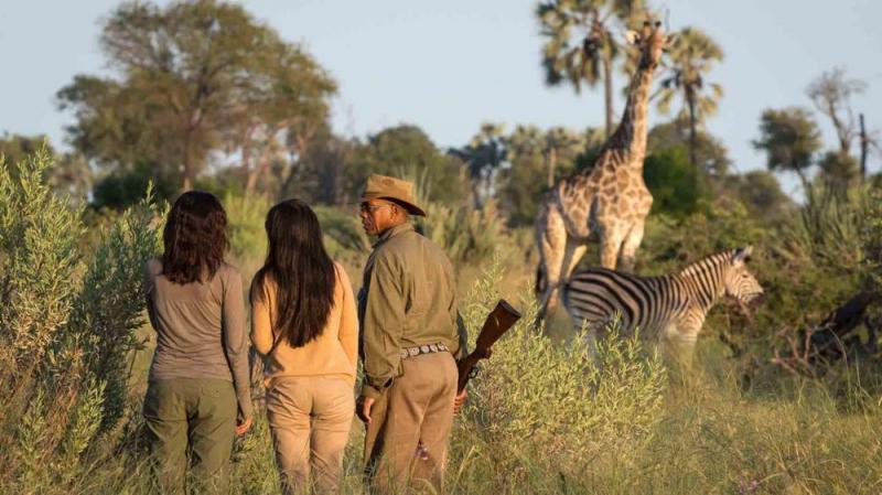Botswana Safari Package