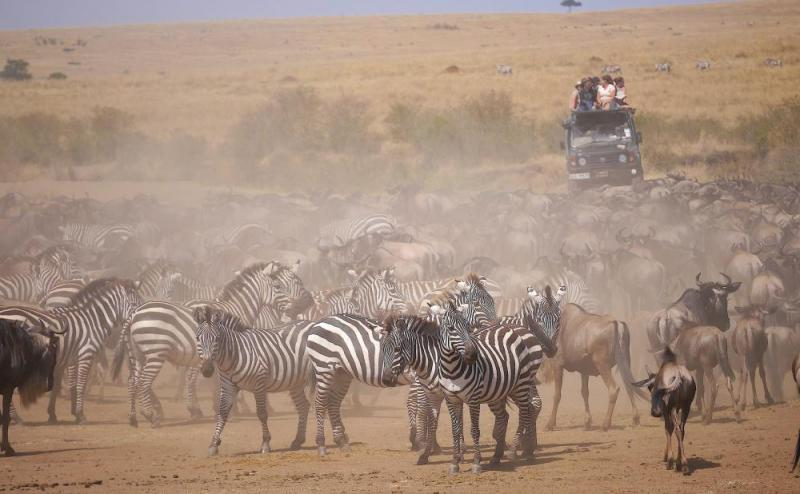 Kenya Safari - Three Star Option Package