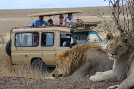 Adventure Safari Package