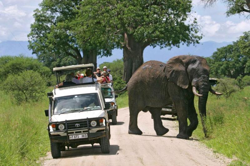 10 Days Kenya And Tanzania Explorer Package