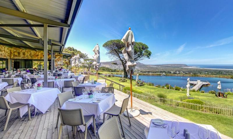 Cape Point And Wine Tasting Tour Package