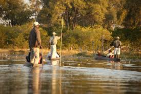 11 Day Kalahari & Okavango Mobile Tented Safari Package