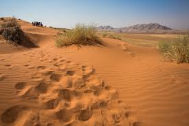 18 Day Ultimate Namibia Private Tour Package